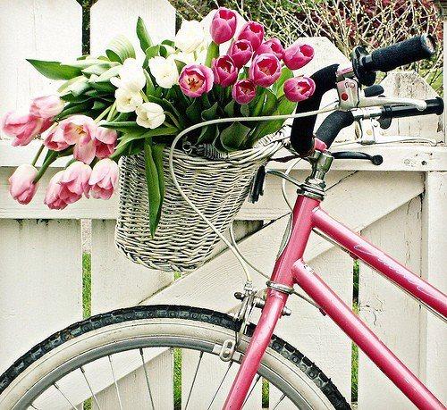 Biciclettata di primavera 2
