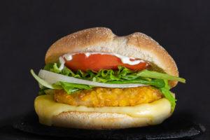 Cotoburger1200x800