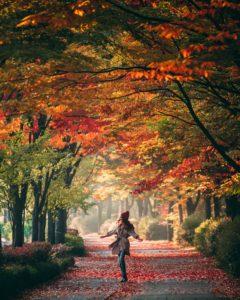 passeggiata foliage
